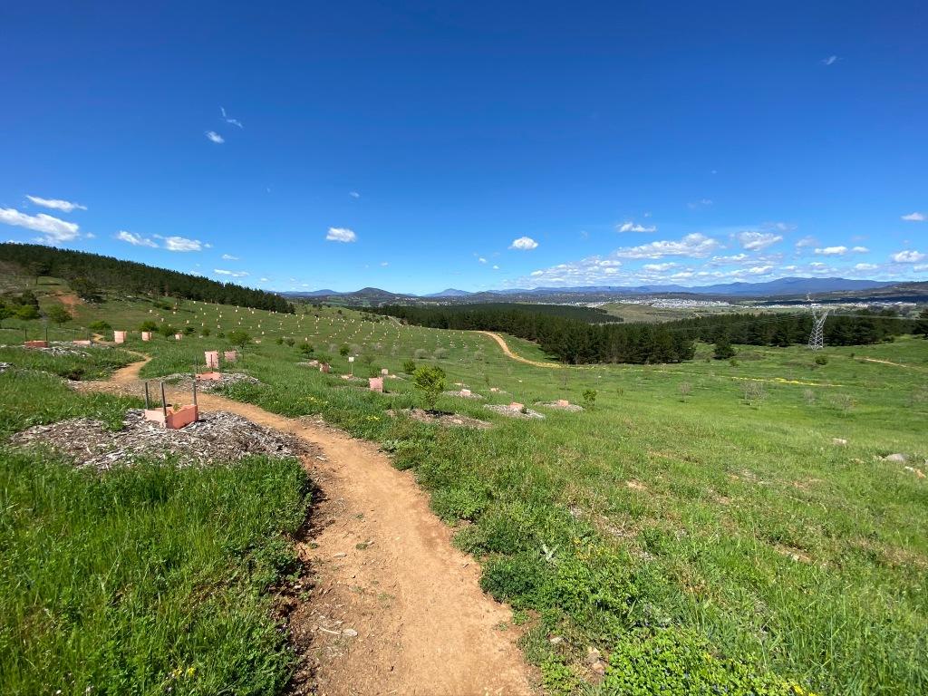 Molonglo Valley views